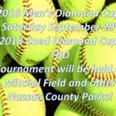 Diamond Cup Tournament