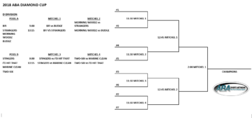 Diamond Cup Bracket is now up!!